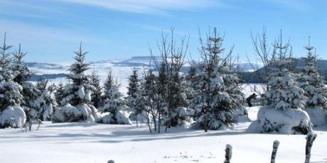 Domaine de Sancy Ski Auvergne