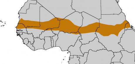 Sahel, Afrique, carte,