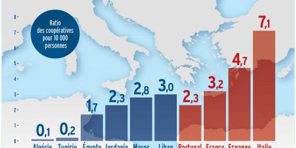 Les coopératives au nord et au sud de la Méditerranée