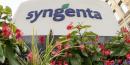 Syngenta voit son chiffre d'affaires reculer plus que prevu