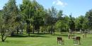 parc de l'Epervière