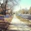 Sur le chemin des bureaux de vote