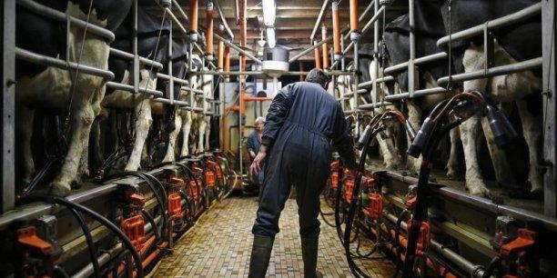 Le prix moyen du lait payé aux agriculteurs frise les 300 euros les 1.000 litres en France.