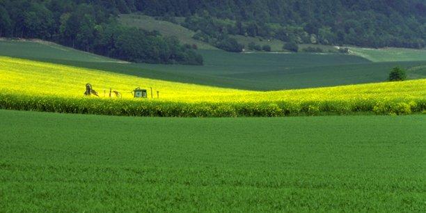 Grand nord des pratiques de d veloppement conomique for Chambre agriculture nord