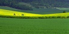La Chambre d'agriculture du Nord-Pas-de-Calais a déjà rejoint Agro-transfert ressources et territoires, une structure picarde faisant le lien entre la recherche et son application par les agriculteurs.