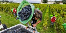 Si l'on prend le cas de l'agriculture, 1 milliard d'euros à l'export en plus permettrait la création de 20.000 à 30.000 emplois supplémentaires, pour une productivité de 50.000 euros par travailleur agricole.