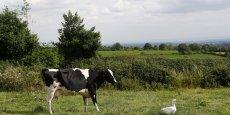 """""""61% de l'ensemble de notre nourriture et de nos boissons va en Europe"""", a expliqué le président de la National Farmers Union."""