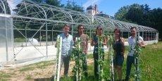 """""""Nous souhaitons que cette ferme-pilote soit un lieu d'expérimentation de l'agriculture urbaine et ainsi faire connaître la culture de végétaux hors-sol"""", explique l'entrepreneur Eric Dargent, porteur du projet (à droite sur la photo)."""