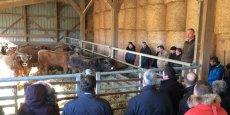 Lors de la journée du 17 janvier, la Fédération régionale bovine du Sud-Ouest a conduit les 17 dirigeants de magasins Système U Sud dans une exploitation agricole du Caylar (34)
