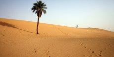 Avec ce record de températures, les zones désertiques comme ici en Algérie pourraient s'étendre à la surface du globe.