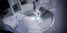 Cutting Edge se lance dans la commercialisation de ses implants innovants à l'international
