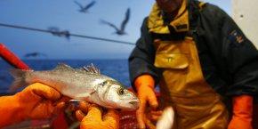 Mer économie maritime France