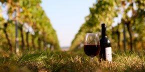 La Tribune Wine's Forum, le 9 novembre à Perpignan