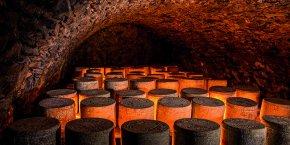 Tunnel d'affinage Cantal Salers