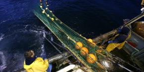 Être entrepreneur, c'est comme prendre la mer : le risque et l'inconnu sont au rendez-vous. Ce n'est d'ailleurs pas un hasard si le capitalisme des origines est né de la mer.