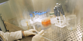 L'enquête du Leem a été effectuée auprès de 30 laboratoires en 2016. Ils représentent 62% du chiffre d'affaires du marché français.