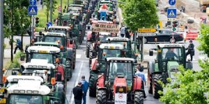 Pas de quoi grogner pour les agriculteurs