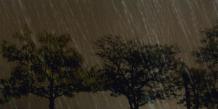 Pour faciliter les démarches d'indemnisation en cas de dommages causés par la grêle, l'assuré doit fournir le plus de preuves possible à sa compagnie d'assurance (photographies des dommages, factures des biens abîmés, etc.) | REUTERS