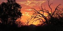 Levé de soleil en Afrique