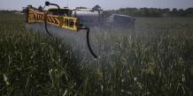 Vers une limitation de l'usage des pesticides