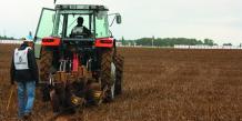 """Les finales mondiales du championnat de labour ne sont qu'un des nombreux rendez-vous que l'agriculture propose au travers des """"Les Terres de Jim"""""""