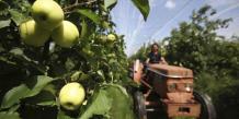 L'agroalimentaire français demande des aides après l'embargo russe