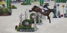 Jeux equestres mondiaux 2