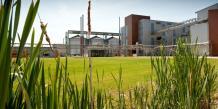 Les industries liées à la production et à la transformation de la biomasse ont souffert d'un manque d'investissement dans l'innovation, ces dernières années. REUTERS.