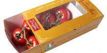 Les écoserres de Pontenx-les-Forges vont produire 5.000 tonnes de tomates grappes et tomates cerises par an.