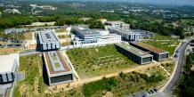 L'Université Nice Sophia-Antipolis s'appuie sur un tissu local assez dense en ce qui concerne l'aide à la création entreprenariale.