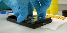 Dans son laboratoire, la statup Dendris développe des biopuces à ADN pour diagnostiquer des bactéries.