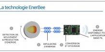 EnerBee veut remplacer piles et batteries dans les objets connectés