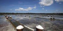 Paniers de sel récolté aux Philippines