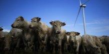 Les eleveurs bovins mobilises contre la degradation de l'economie de la filiere
