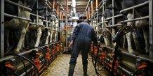 Des agriculteurs porcins et laitiers manifestent en bretagne