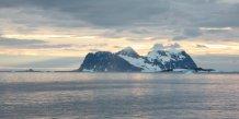 Le japon reprendra la peche a la baleine dans l'antarctique d'ici fin mars