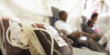 Un cas de transmission du virus zika par transfusion sanguine au bresil
