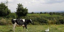 Terres agricoles au RU