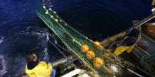 Mer, pêche, France,