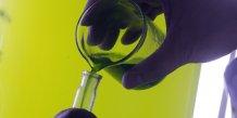 Algue, biotech marine,