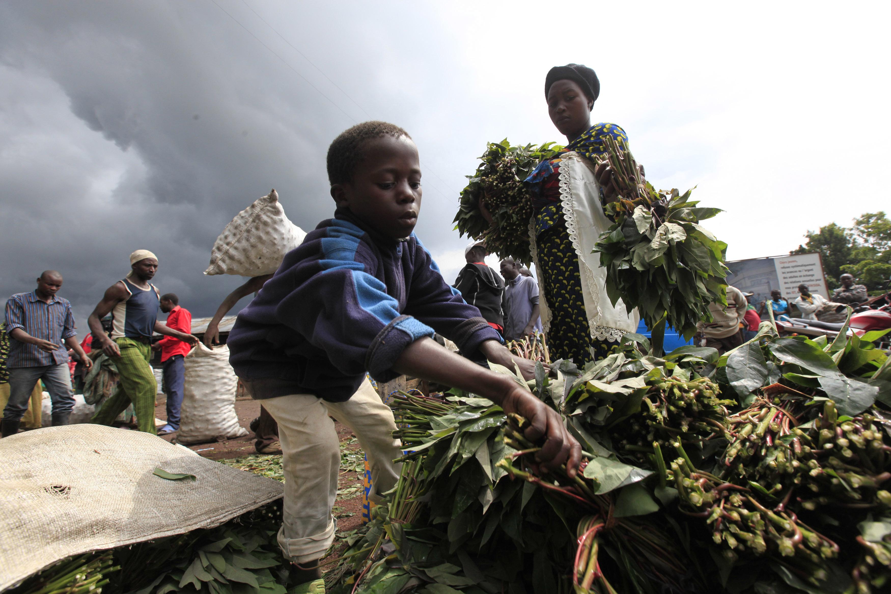 Comment La France Imagine Une Possible Implosion De L Afrique Face Au Covid 19
