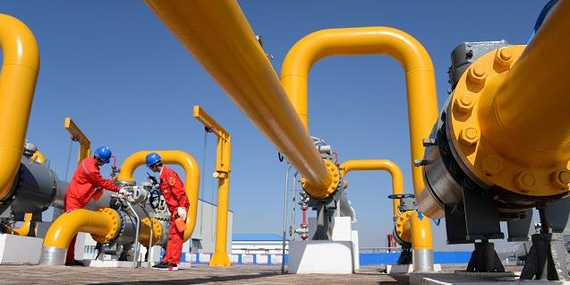 Convertir du fumier en gaz: le potentiel de la gazéification hydrothermale