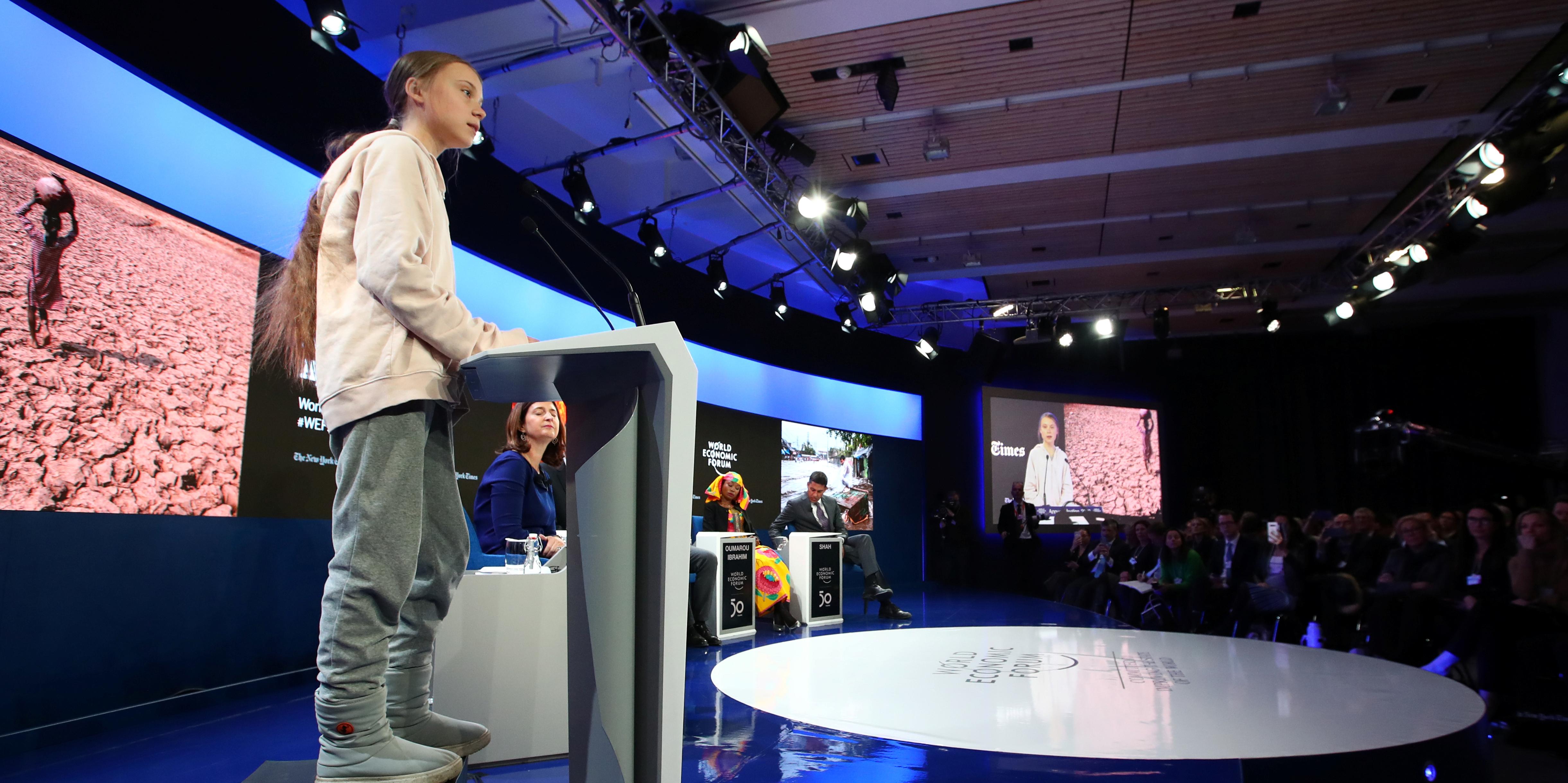 À Davos, tout le monde veut planter des arbres... pour mieux cacher la forêt