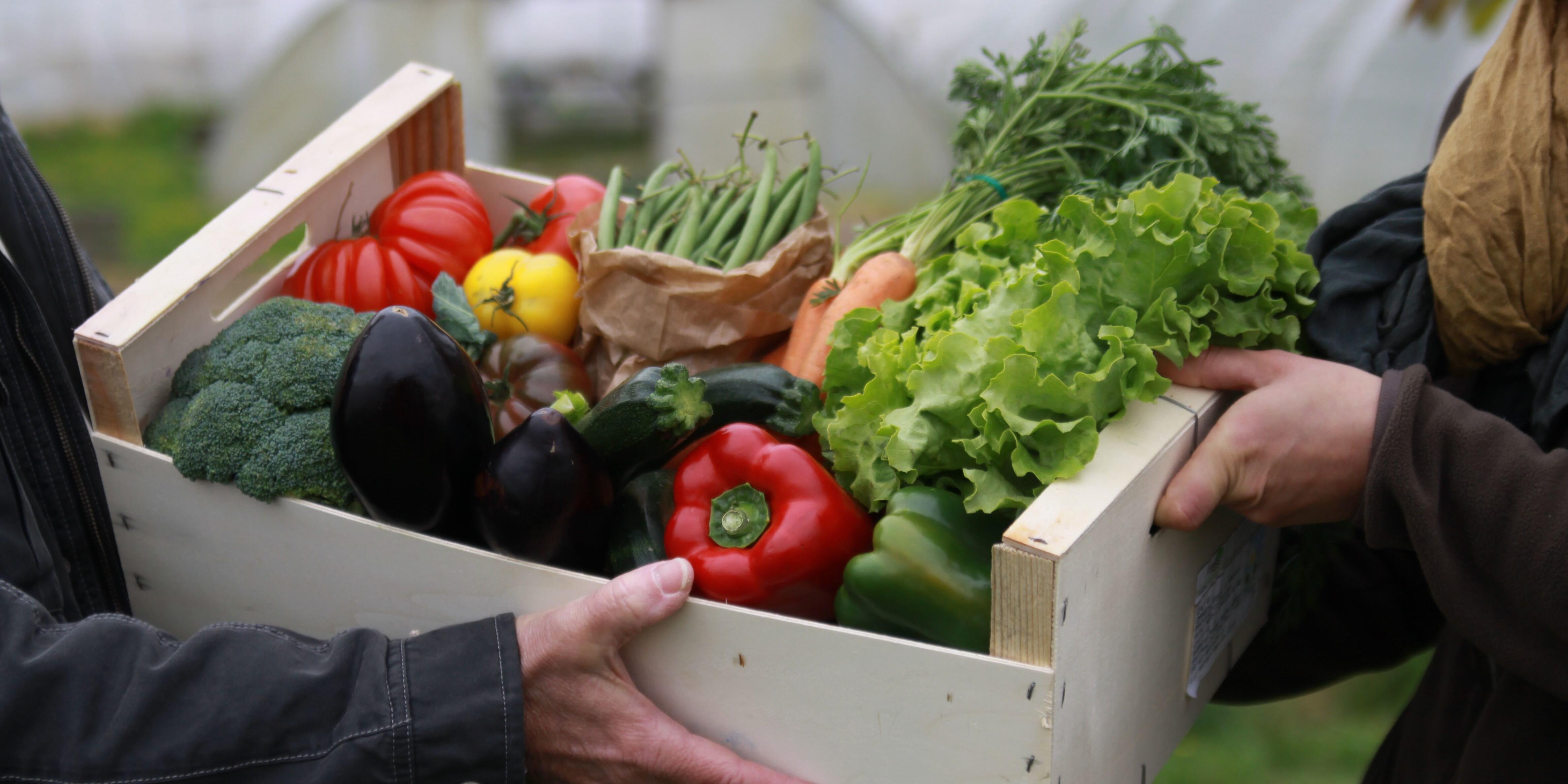 Alimentation et démocratie: rejoignons-nous maintenant, pour après