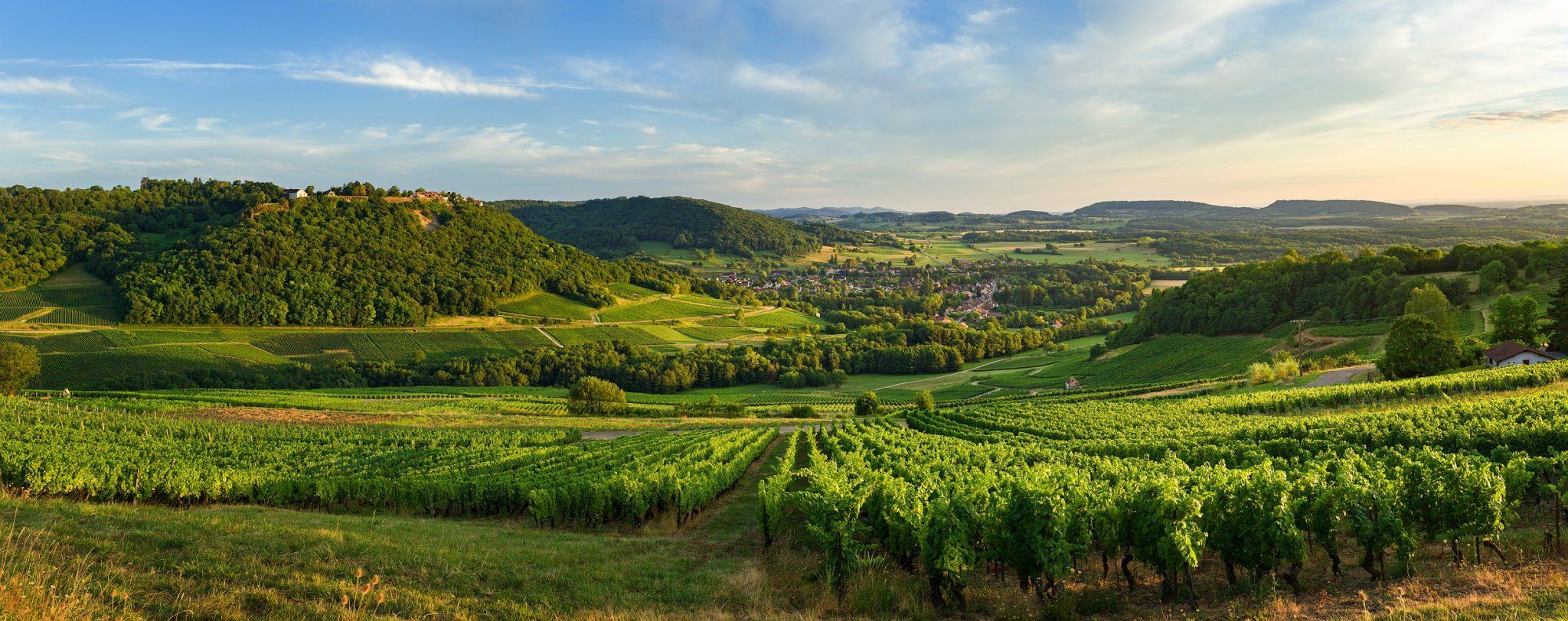 L'oenotourisme, l'autre manière de rencontrer les Vins du Jura à Château-Chalon