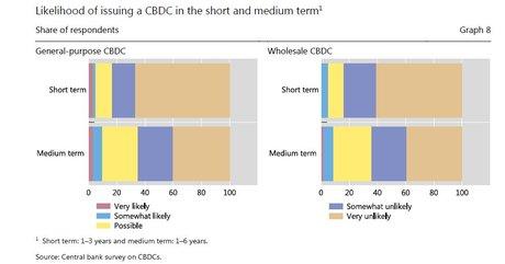 BRI monnaie digitale banque centrale horizon