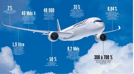 NON_____aviation, infographie, pollution, H296