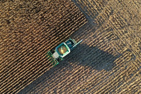 Agriculture / Céréales : Un agriculteur de l'Indiana (Etats-Unis) récolte le blé de ses champs