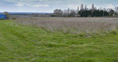 Babylone Growers site