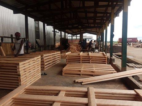 bois zes gabon nkok zone industrielle